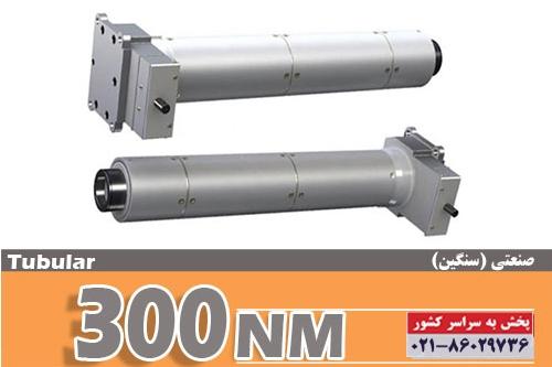 side-barzante-300kg1-UPS2